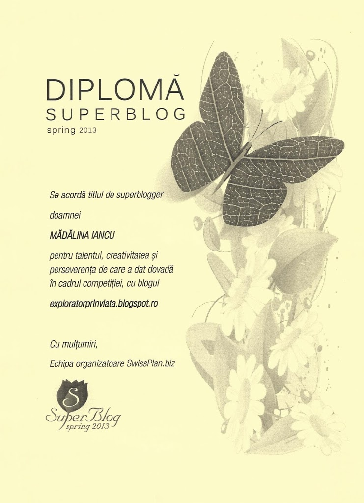 Dilploma-Spring-Super-Blog-2013