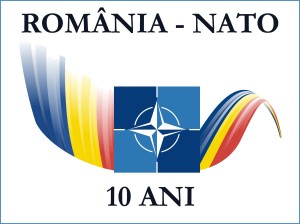 logo_10_ani_nato