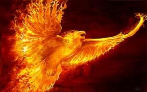 articole_phoenix2015