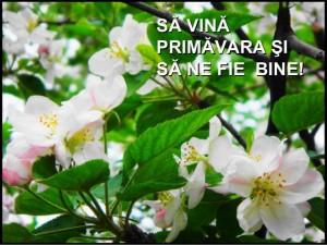 primavara2