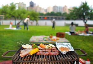 picnic-13