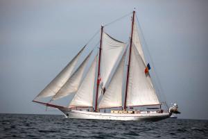 regata-marilor-veliere-19